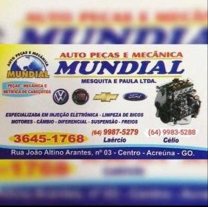 Auto Peças e Mecânica Mundial